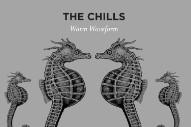 "The Chills – ""Warm Waveform"" (Stereogum Premiere)"