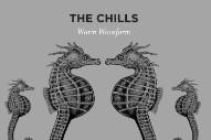 """The Chills – """"Warm Waveform"""" (Stereogum Premiere)"""