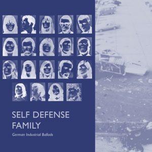 "Self Defense Family - ""It's Best We Address It"" (Stereogum Premiere)"