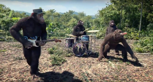 """Coldplay Will Be Gorillas In Their """"Adventure Of A Lifetime"""" Video"""