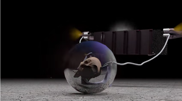 Oneohtrix Point Never Nate Boyce Repossession Sequence Video Stereogum