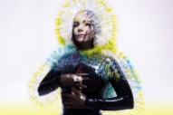 Hear Björk Break Down &#8220;Stonemilker&#8221; On <em>Song Exploder</em>&#8217;s Season Finale