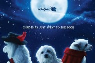 Sigur Rós Members Produced A Talking Dog Christmas Movie