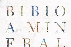 Bibio -