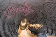"""Beverly – """"Victoria"""" (Stereogum Premiere)"""