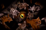 "Meow The Jewels – ""Meowpurrdy"" Video (Feat. Lil Bub, Maceo, & Delonte)"