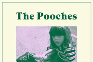 "The Pooches – ""Heart Attack"" (Stereogum Premiere)"