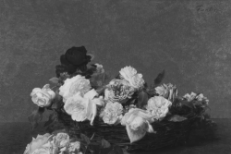 """Cold Cave - """"Your Silent Face"""" (New Order Cover)"""