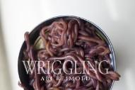 Stream Abi Reimold <em>Wriggling</em>