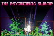 Stream Dr. Dog <em>The Psychedelic Swamp</em>