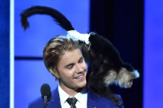 Monkey Org Begs Justin Bieber Not To Adopt Another Monkey Even Though He Promises Not To Bring This One To Germany