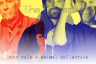 Read A Conversation Between John Cale And Animal Collective's Avey Tare & Geologist