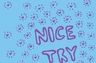 Stream Nice Try <em>Nice Try</em> (Stereogum Premiere)