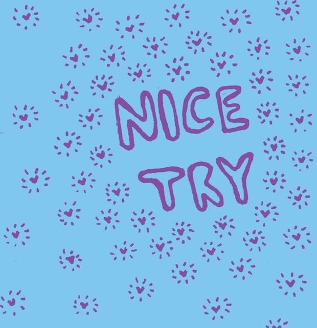 Stream Nice Try Nice Try (Stereogum Premiere)