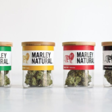 Official Bob Marley Brand Cannabis Launches