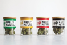 Official Bob Marley Brand Cannabis Launches Today