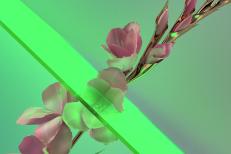 "Flume – ""Never Be Like You feat. Kai (Disclosure Remix)"""
