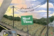 Stream Frankie Cosmos <em>Next Thing</em>