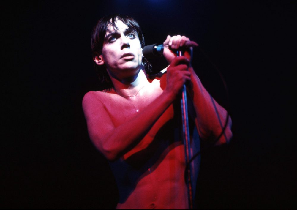 Torrent discography the iggy and pop stooges (Proto