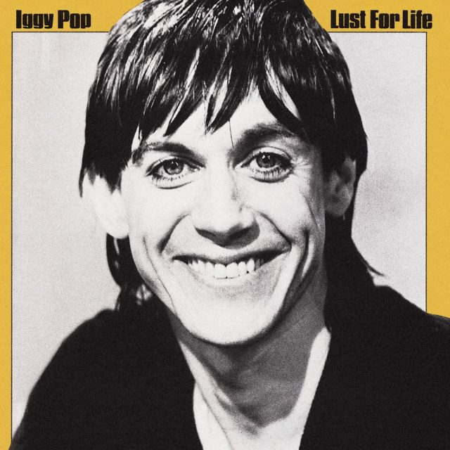 Iggy Pop Albums From Worst To Best - Stereogum