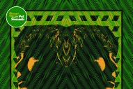 Stream Levitation Festival&#8217;s <em>A Tribute To Pet Sounds</em> Compilation (Stereogum Premiere)