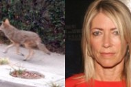 Kim Gordon Denies Getting Bit By A Coyote At Whole Foods