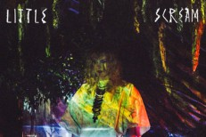 Stream Little Scream <em>Cult Following</em> (Stereogum Premiere)