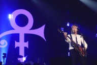 "Watch Paul McCartney Cover Prince's ""Let's Go Crazy"" In Minneapolis"