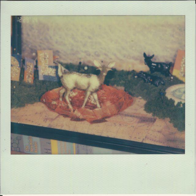 Speedy Ortiz - Foiled Again EP