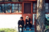 "The Raveonettes – ""Scout"""