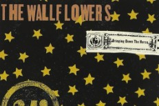 The Wallflowers - Bringing Down The Horse