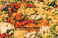 "Brendan Canning – ""Book It To Fresno"" (Stereogum Premiere)"