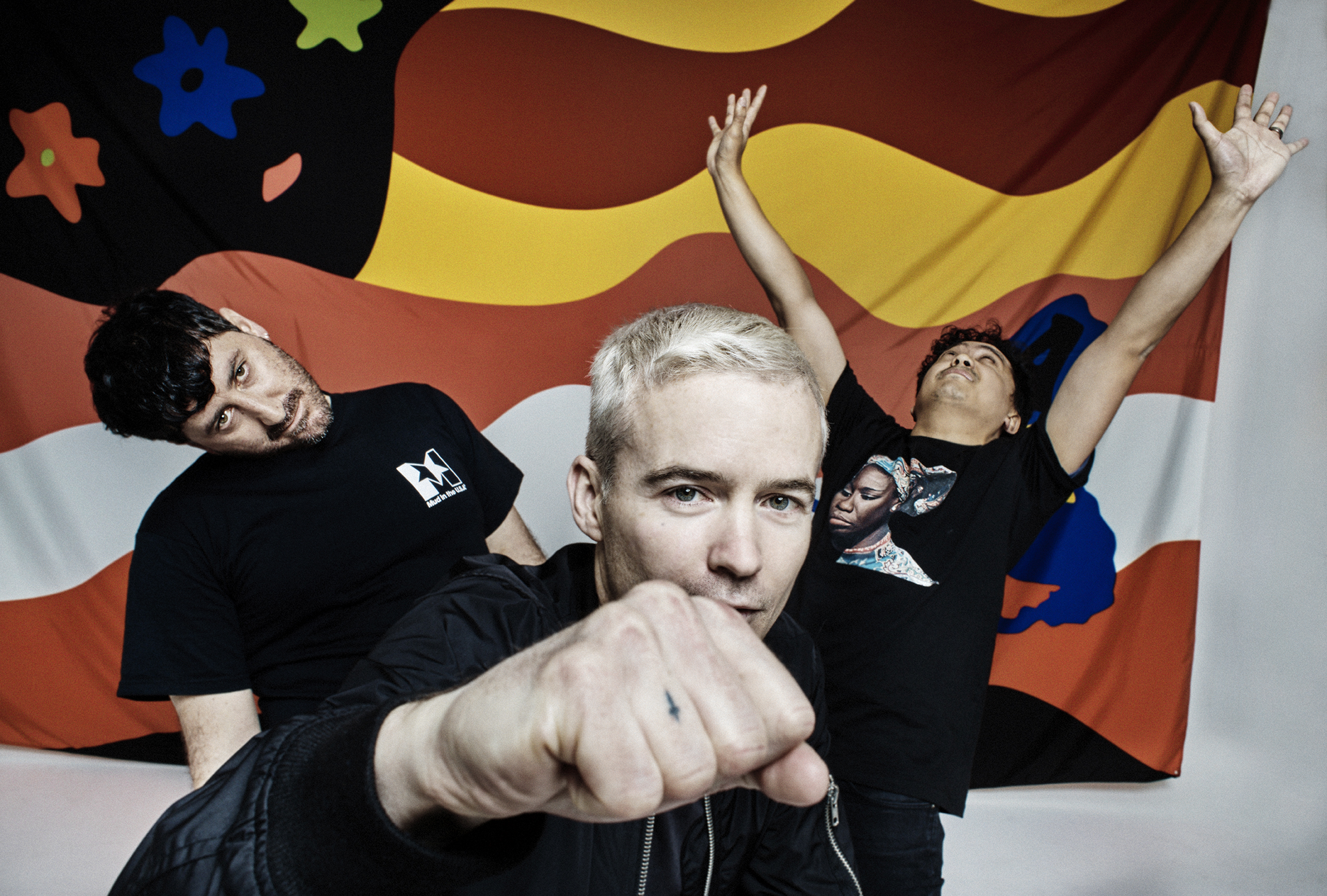 Image result for the avalanches