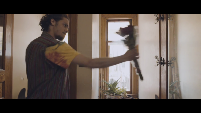 Kweku Collins - Stupid Rose Video