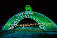 Bonnaroo Attendance Hit All-Time Low This Year