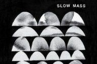 "Slow Mass – ""Dark Dark Energy"""