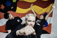 The Avalanches Cancel Shows Due To Health Reasons