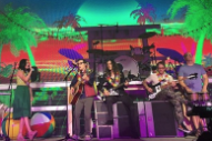 "Watch Kacey Musgraves Join Weezer On ""Island In The Sun"" In Nashville"