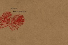 Talons' Album Cover