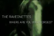 "The Raveonettes – ""Where Are You Wild Horses?"""