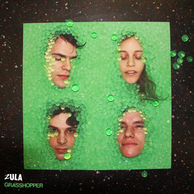 Stream Zula <em>Grasshopper</em>