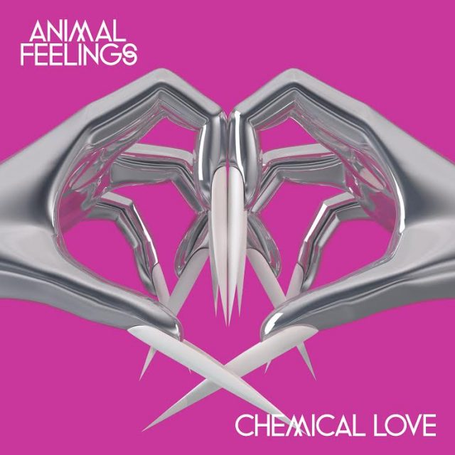Animal Feelings -