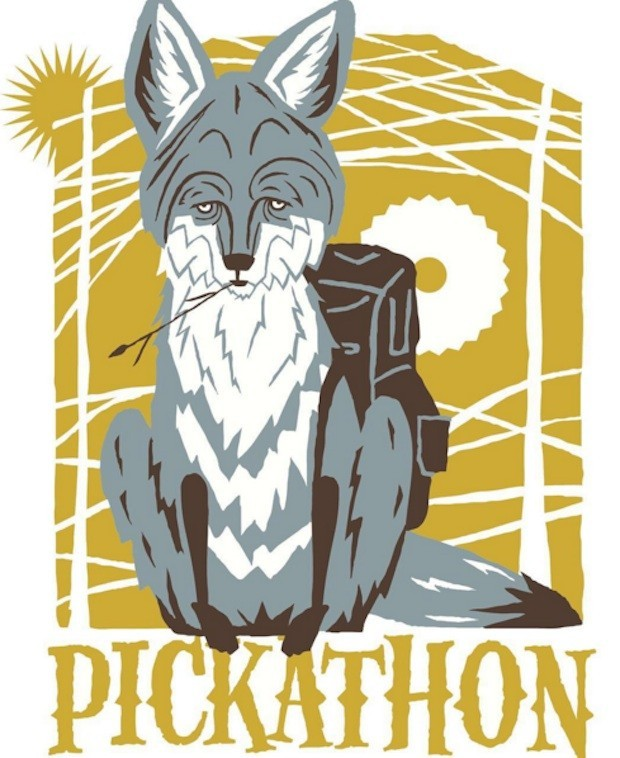 Livestream Pickathon 2016