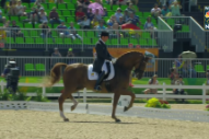 "Watch Olympic Dressage Horse Dance To Santana & Rob Thomas' ""Smooth"""