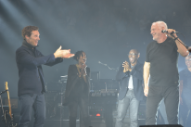 "Watch David Gilmour Do ""Comfortably Numb"" With Benedict Cumberbatch In London"
