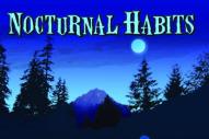 """Nocturnal Habits – """"Echophilia"""""""