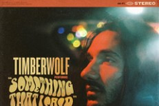 TImberwolf -