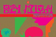 The Flaming Lips Announce New Album <em>Oczy Mlody</em>