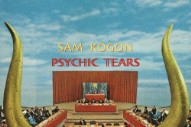 "Sam Kogon – ""I Was Always Talking"" (Feat. Frankie Cosmos)"