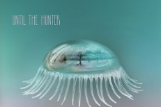 Stream Hope Sandoval & The Warm Inventions <em>Until The Hunter</em>